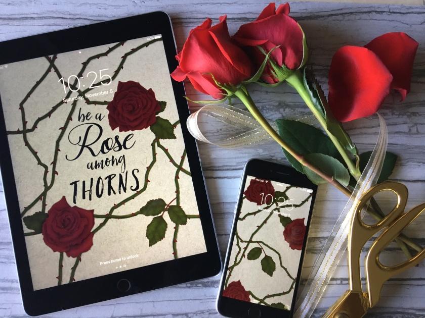 rose-among-thorns-blog-post-pic